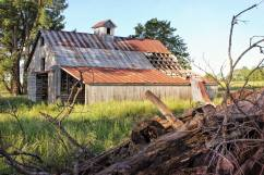 Woodpile, Barn 8 X 12