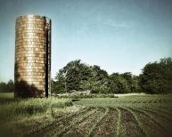 Old Silo, Field 8 X 10