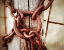 Chain, 8 X 10