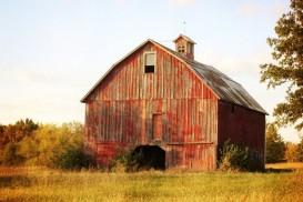 Barn, Last Glow of Summer 8 X 12