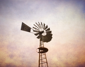Windmill, Central Illinois 8 x 10
