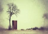 Field, Abandoned Silo