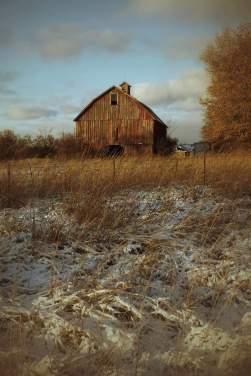 Barn, First Snow